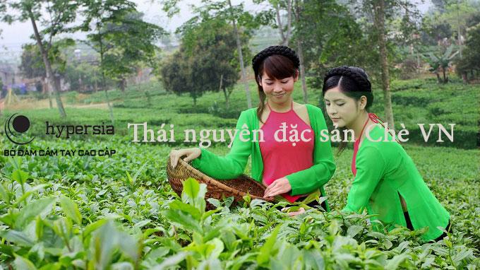 Tìm hiểu về Thái Nguyên - con người Thái Nguyên